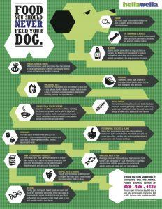 FoodsNeverToFeedYourDog-640x828-infographic
