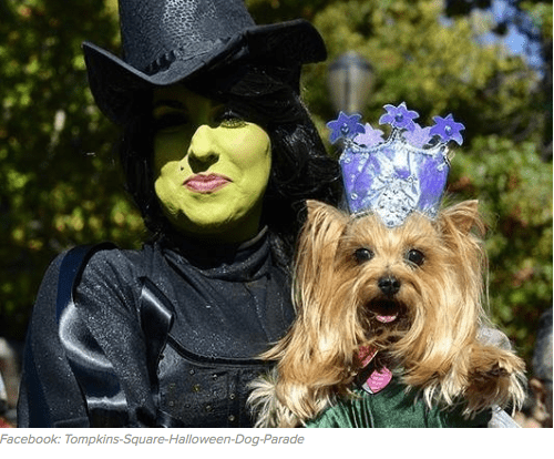 Wicked Witch and Toto dog costume