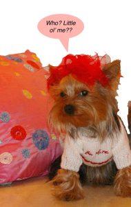tink valentine 2011