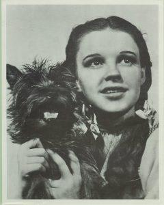 Terry-and-Judy-Garland