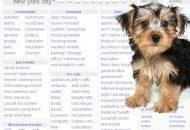 Do not buy a puppy through craigslist