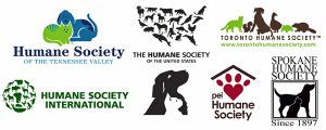local-animal-shelters