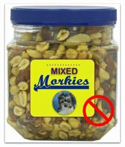 mixed_nuts_morkies