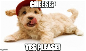 cheese-yes-please