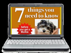 large 7 things on laptop