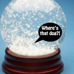 small-dogs-that-dont-shed snowglobe