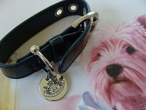 juicy couture dog collar