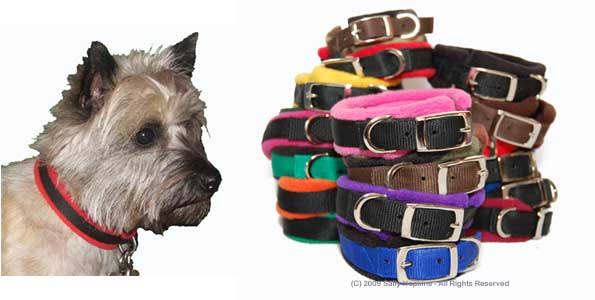 padded collars collage