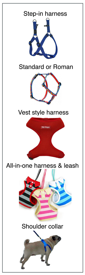 types-of-harnesses-for-dogs