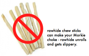 no rawhide for morkie puppies
