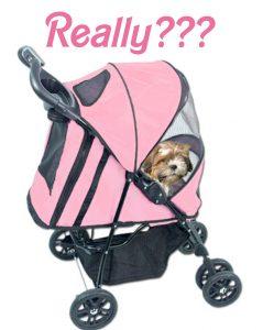 small-dog-syndrome dog stroller