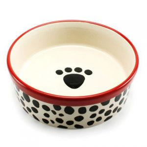 b&w and red dog bowl