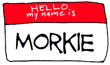 hello my name is morkie red