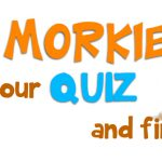 know-morkies-featured-pic