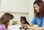 vet with yorkie puppy and little girl