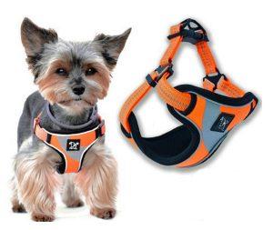 small-dog-harness