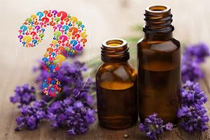 Research any essential oils you use around the home - some aren't safe for all pets.