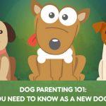 Barkily.com for dog apps