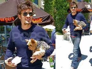 Orlando Bloom and his Morkie Frankie.