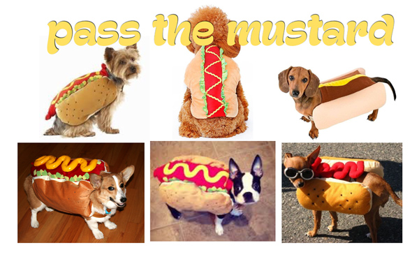 hot-dog-costumes