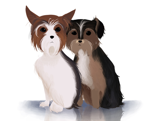 illustrated-pair-of-morkies