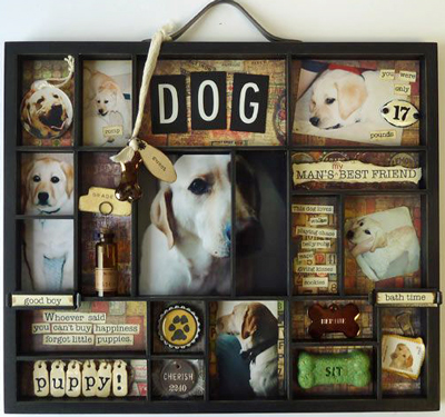 dog shadow box