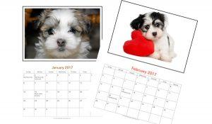 sample calendar pages