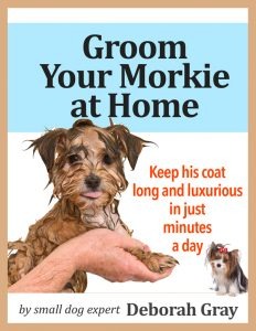 Groom Your Morkie at Home is now available at Amazon.com